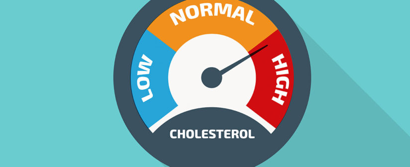 PrivaCare help me! What is the deal with cholesterol?