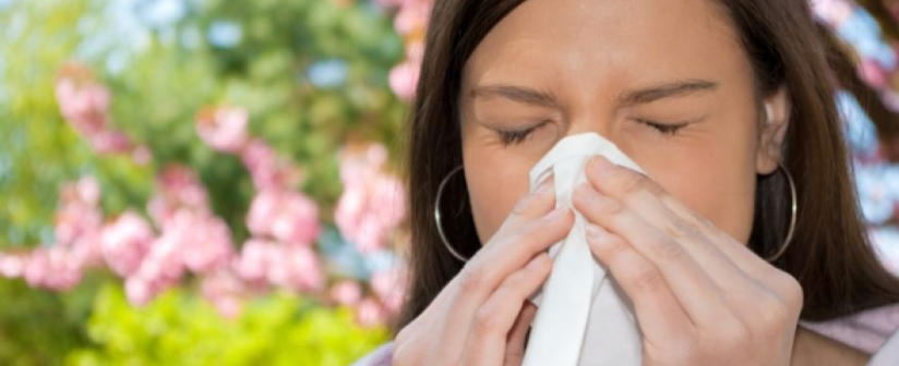 How To Avoid Summer Allergies