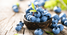 blueberries can help to kill cancer cells